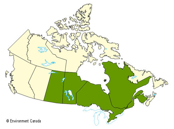 Environment and Climate Change Canada - Weather and ...