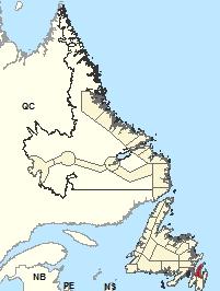 Carte de localisation - Péninsule d'Avalon Nord
