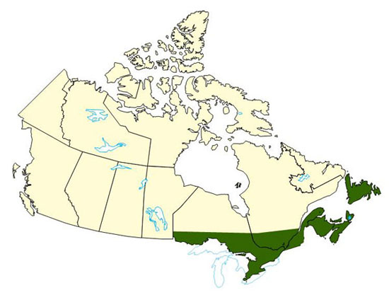 Carte du canada avec les régions affectées rehaussées