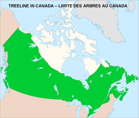 Map of the Treeline in Canada